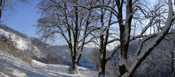 Questenberg Januar 2009, Hoch (1539)